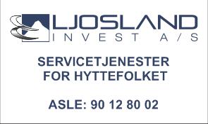 LSInvest